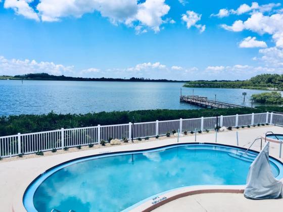 Heated swimming pool overlooking Terra Ceia Bay!