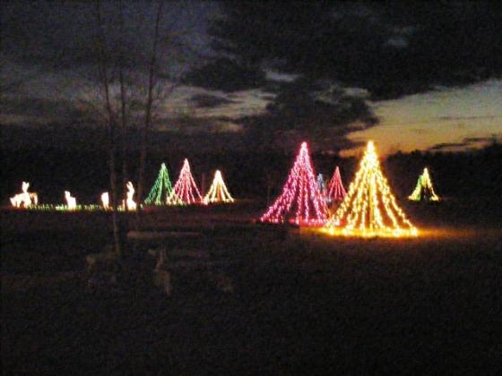 Christmas at CarrollWoods RV Park