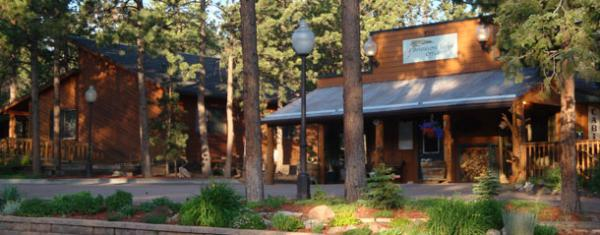 B&B, Cabins, RV's and more at Bristlecone Lodge!