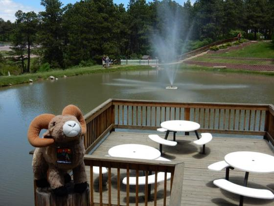 What a relaxing jplace to eat at Colorado Heights Campground!