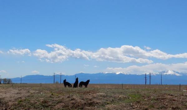 Great scenery at Falcon Meadow RV Campground - near Colorado Springs