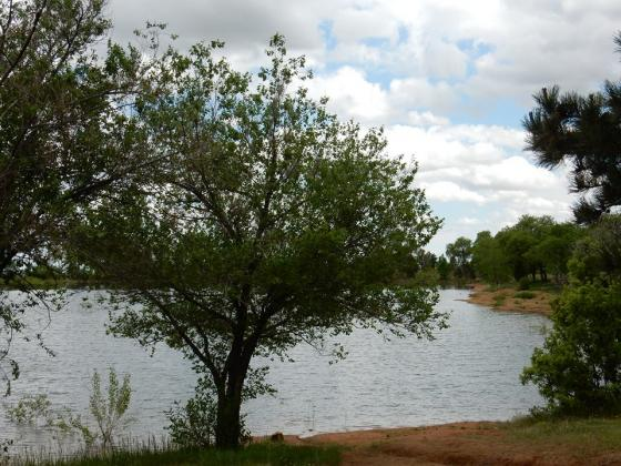 Fishing is an option onsite at Golden Eagle Campground