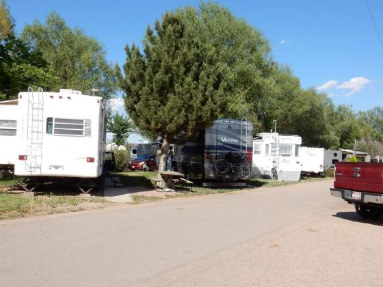 Lots of trees at Greeley RV Park