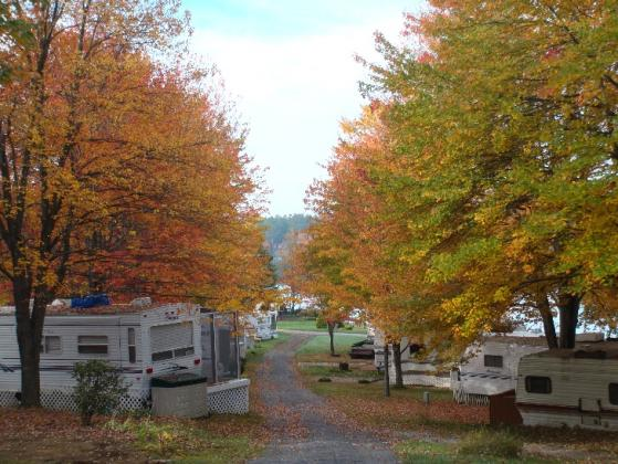 Seasonal RV camping area has paved roads and grassy full hookup sites.