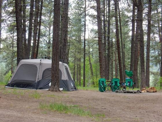 Shady tent sites at Sportsman's Campground and Mountain Cabins, north of Pagosa Springs Colorado
